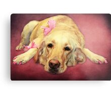 Morgan.... the Madam of the Seeing Eye Dogs Metal Print