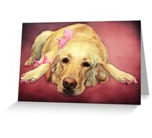 Morgan.... the Madam of the Seeing Eye Dogs Greeting Card