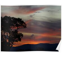 Sunset In The Bush. Poster