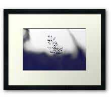 The Beauty Of Weeds #3 Framed Print