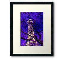 landmark chicago water tower Framed Print