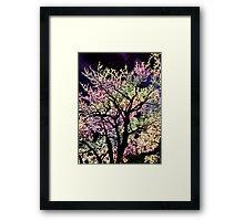 evening tree Framed Print