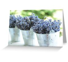 Lavender buckets Greeting Card