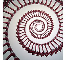 MOMA spiral chairs Photographic Print