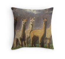 Peninsula Alpacas Throw Pillow