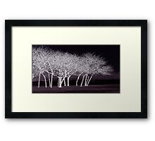 frosted night Framed Print