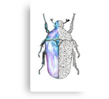 Beetle 2  Canvas Print