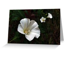 white spots Greeting Card