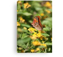 Living The Life Canvas Print