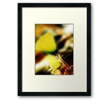 yellow glass Framed Print
