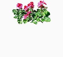 Geraniums In a Row Womens Fitted T-Shirt