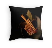 Spices 4 Throw Pillow