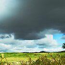 Stormy weather by sarnia2