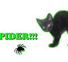 Spider!!! by SusieJM