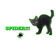Spider!!! Photographic Print