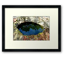 The Eye of the Forest Framed Print