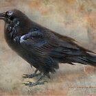 Raven Says: by Kay Kempton Raade