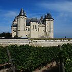Castle in Saumur by julie08