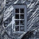 Williamsburg Window by Nigel Fletcher-Jones