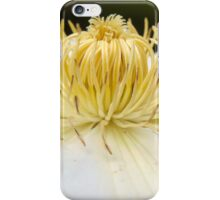 White clematis Flower iPhone Case/Skin
