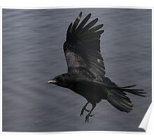 The Carrion Crow Poster