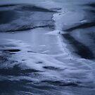 Winter by Bluesrose