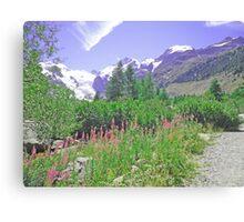 Morteratsch Glacier Trail Switzerland Canvas Print