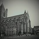 Christ Church Cathedral - Dublin by Ferdinand Lucino