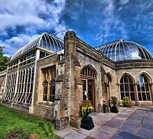 The Orangery by Alex Hardie