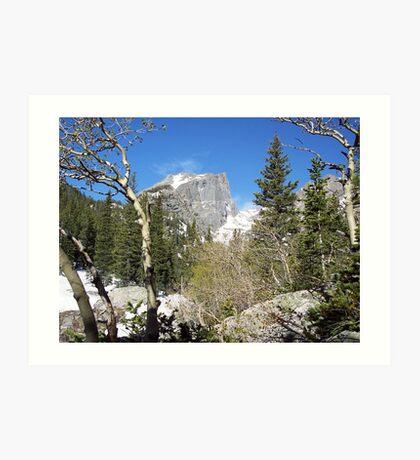 Bear Lake Trail an Hallet Peak RMNP,Colorado Art Print