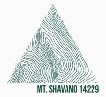 Mount Shavano by januarybegan
