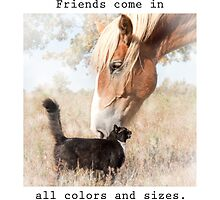 Friends come in all colors and sizes by okiepony