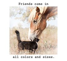 Friends come in all colors and sizes Photographic Print