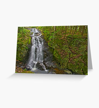 Falls and Gorge Greeting Card
