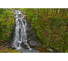 Falls and Gorge Photographic Print