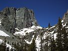 Hallet Peak from Bear lake trail,Colorado RMNP by David  Hughes