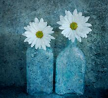 Daisies in Bottles by Barbara Ingersoll