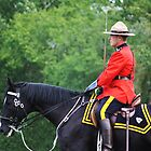 RCMP Musical Ride by lar3ry