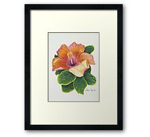 Beauty and Imperfection Framed Print