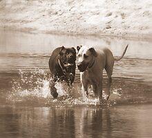 River fun by nkluke147