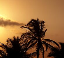 Goan Sunset - Goa, India by lynruss