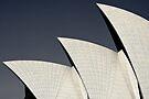 Sydney Opera House  by SD Smart