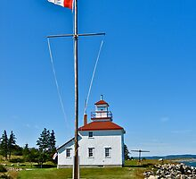 Gilbert's Cove Lighthouse by David Davies
