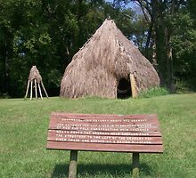 Natchez Indians Home and Granary by Dan McKenzie