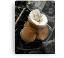 Upside Down, Inside Out Metal Print