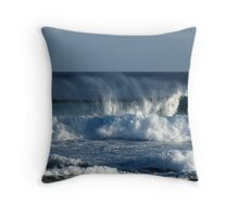 Home Of The Winds Throw Pillow