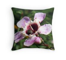 Geraldton Wax Bug Throw Pillow