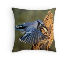 Snatch and Grab Throw Pillow