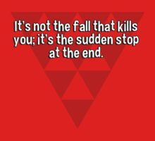 It's not the fall that kills you; it's the sudden stop at the end. by margdbrown