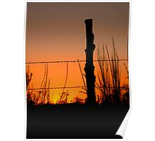 Fencepost at Sunset Poster